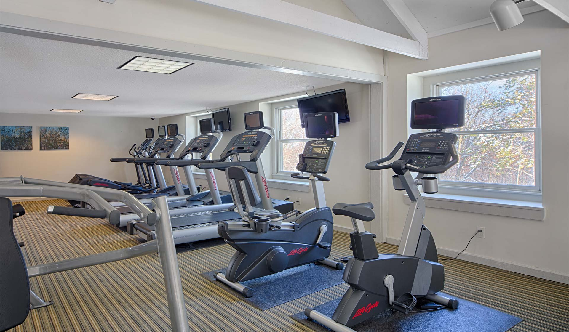 Wexford Village Apartments - Worcester, MA - fitness center